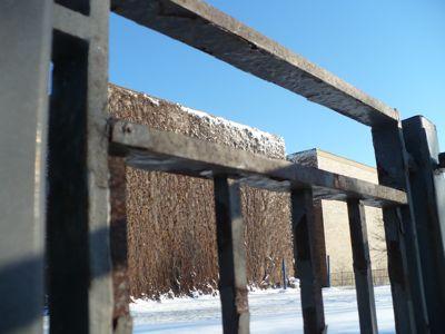 gate-and-skin