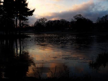 Mirror lake at dawn